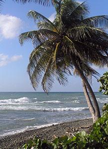 Caribe Playa Beach
