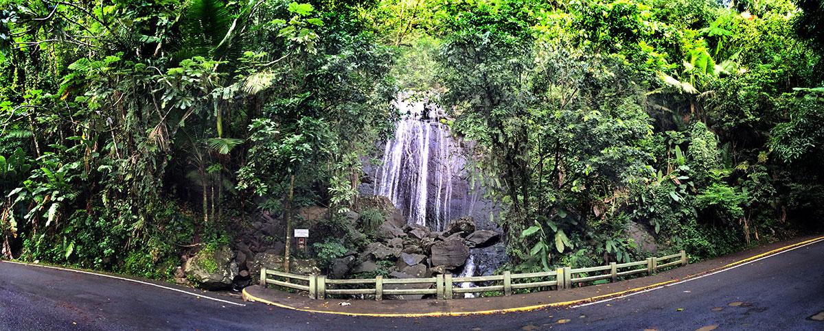 Coca Falls, El Yunque National Forest
